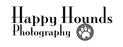 Our goal is to capture your furbaby at their finest and help create lasting memories