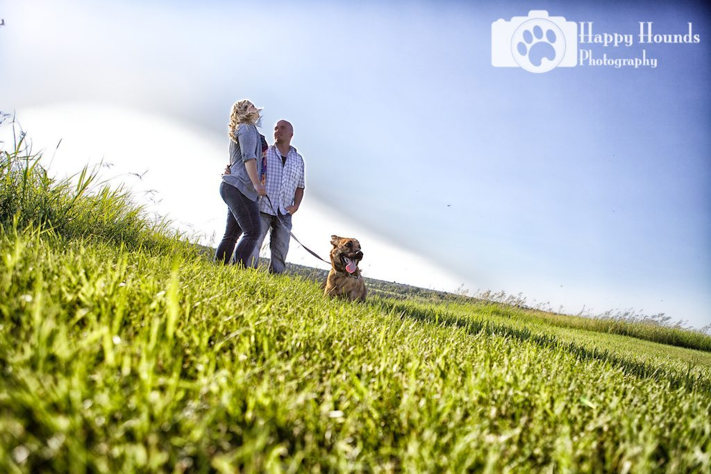 Dog in Field with Owners